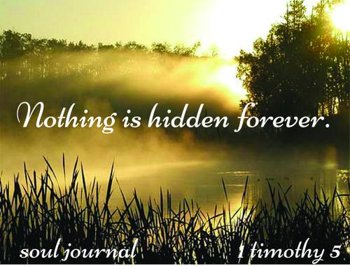Nothing hidden-2